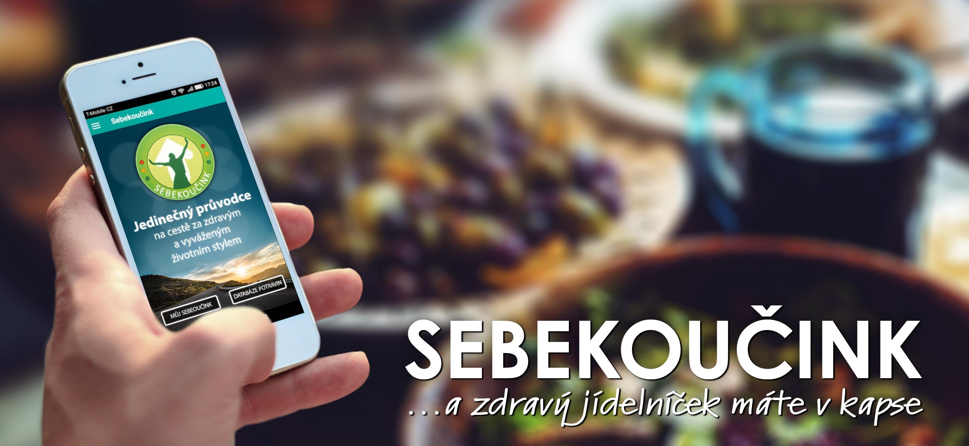 Sebekoucink_MA_01